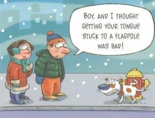 Winter_Humor_2012_111