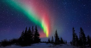 Aurora Over The Trees Of Churchill Manitoba