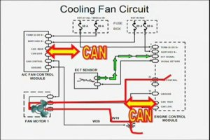 ElectricCoolingFanWiringDiagram | PopScreen