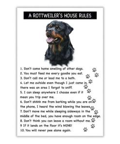 A Rottweilers House Rules Poster Canvas