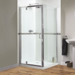 Double Pivot Shower Door 900 Doors Ideas