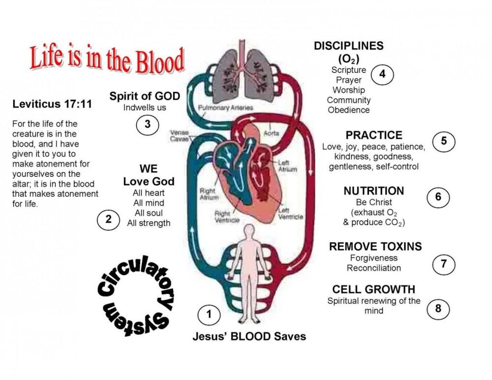 medium resolution of diagram of the heart blank beautiful simple heart diagram blank human body diagram download digram od
