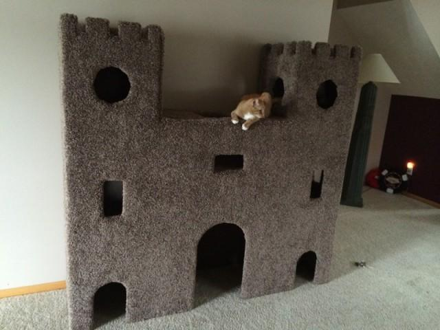 Cat Castle  Weddbook