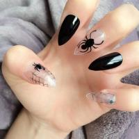 Doobys Stiletto Nails - Spider Cobweb - 24 Hand Painted ...