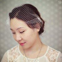 Wedding Birdcage Veil - Bridal Hair Accessories - Wedding ...