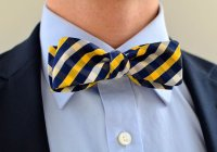 Men's Bow Tie In Navy And Gold- Freestyle Slim Wedding ...
