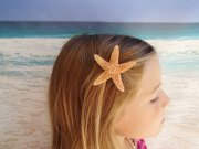 sugar starfish hairclip - natural