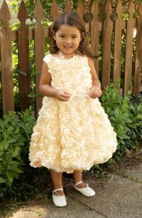 Flower Girl Dress, Girls Gold Dress, Toddler Dress, Baby ...