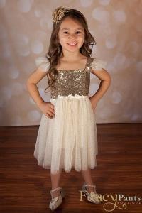 Flower Girl Dress, Gold Sparkle Dress, Sequin Dress, Baby ...