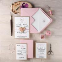 Blush Wedding Invitation Suite (20), Rustic Wedding ...