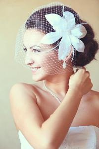 Birdcage Veil Wedding Hairstyles Wedding Fascinator Bridal ...