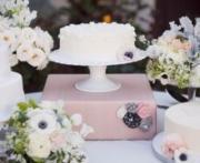 blush pink and shabby chic wedding