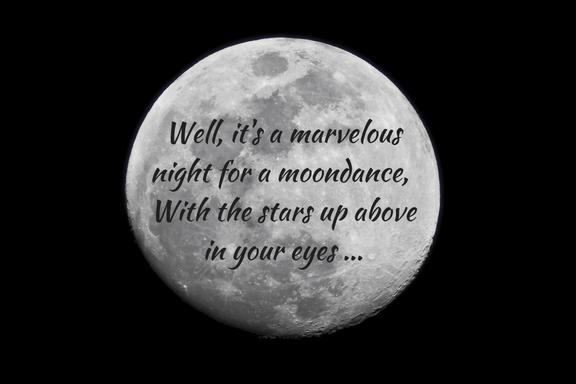 Moondance, Van Morrison / Michael Bublé - photo Matt Benson unsplash.com