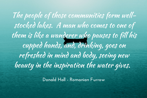 Donald Hall - Romanian Furrow