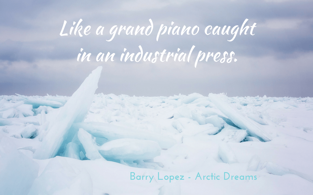 Barry Lopez Arctic Dreams - metaphor ice