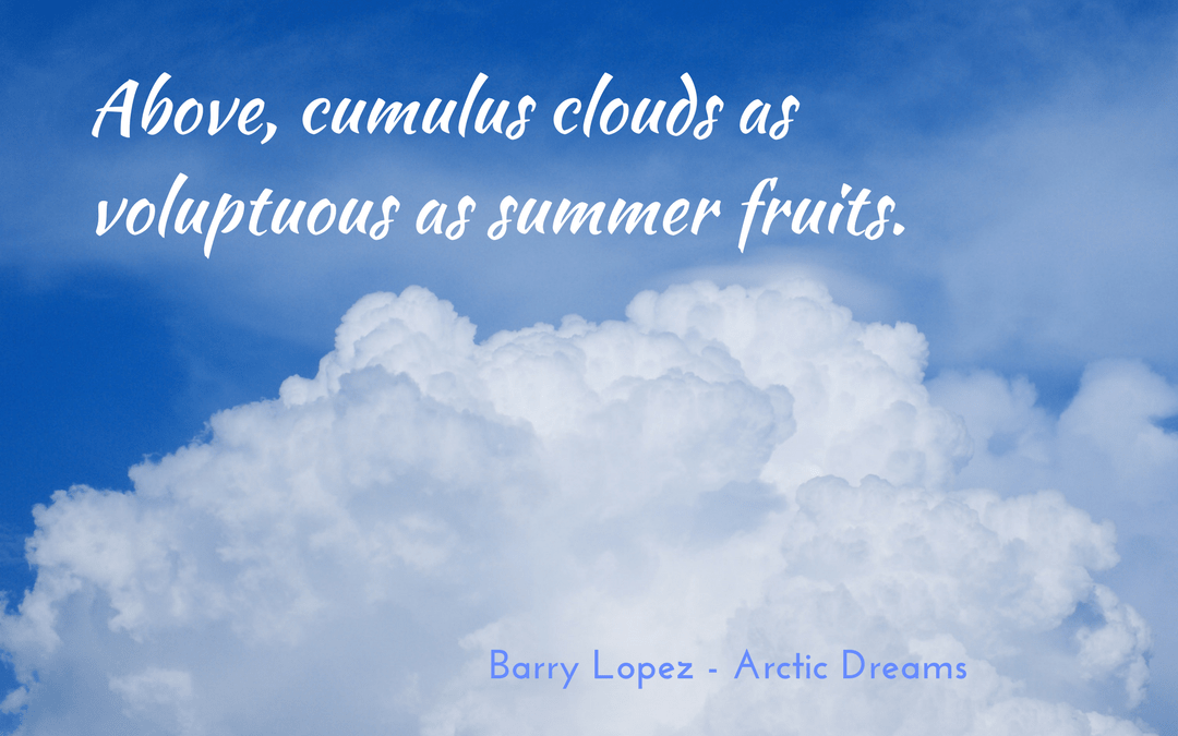 Barry Lopez - Arctic Dreams - simile and metaphor
