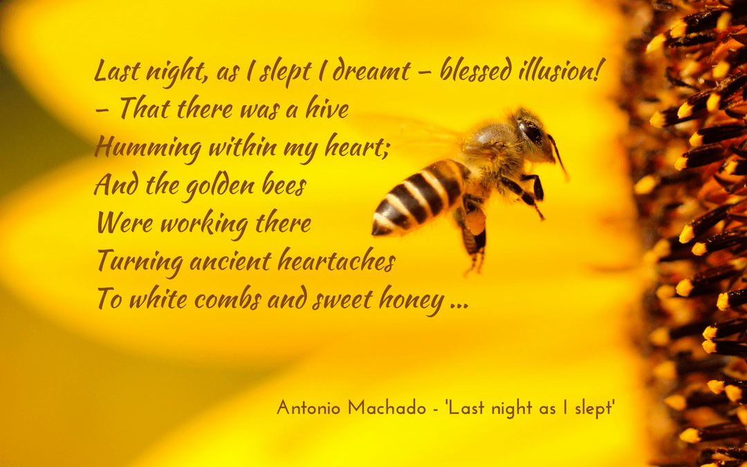 Antonio Machado - Last night as I slept