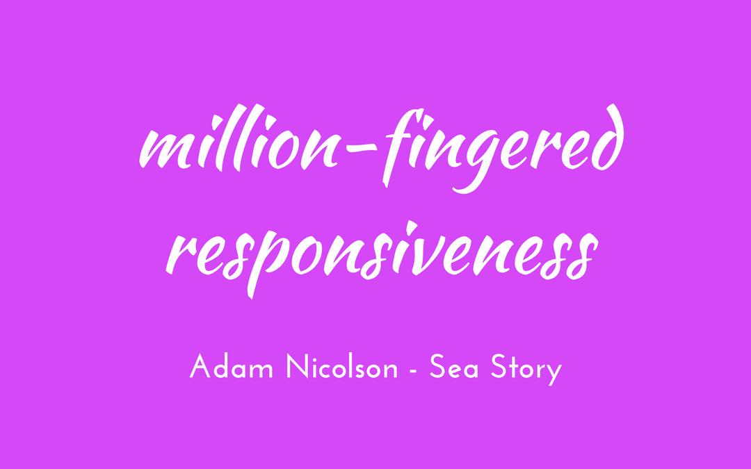 Adam Nicolson - Sea Room - million-fingered responsiveness