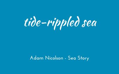Tide-rippled sea