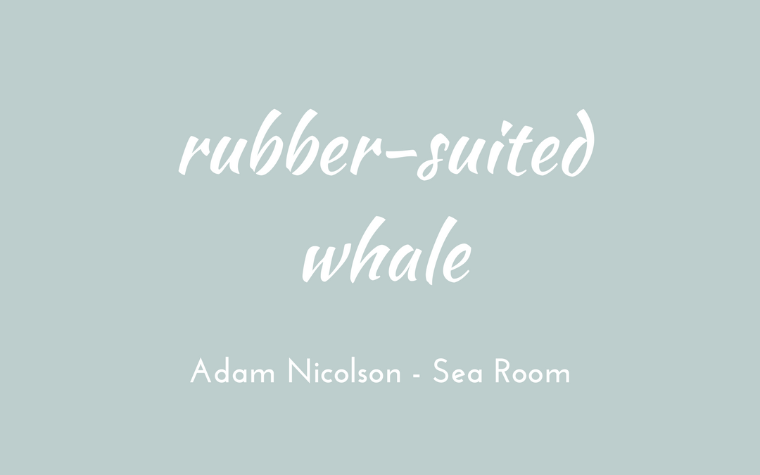 Adam Nicolson - Sea Room