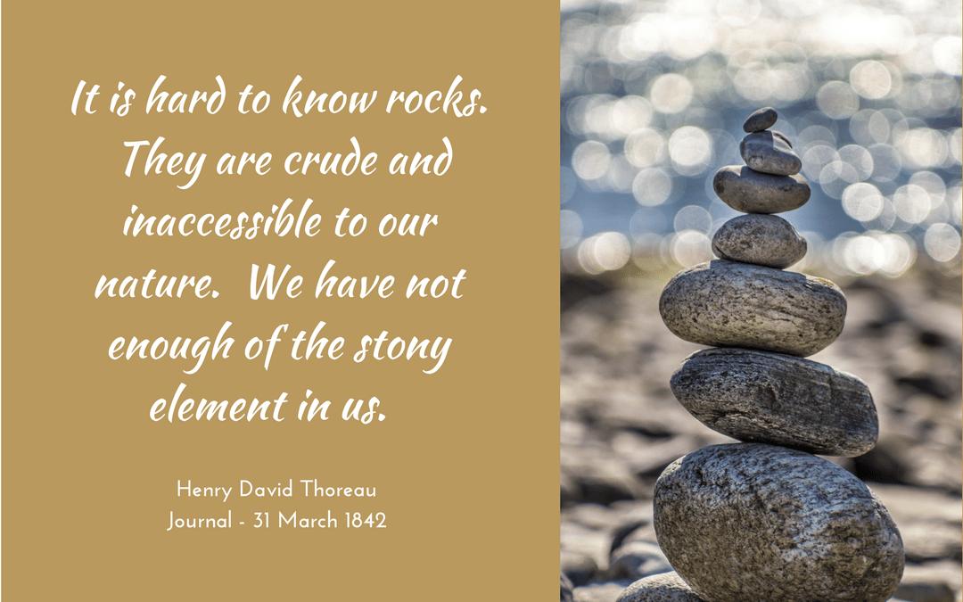 Henry David Thoreau - Journal