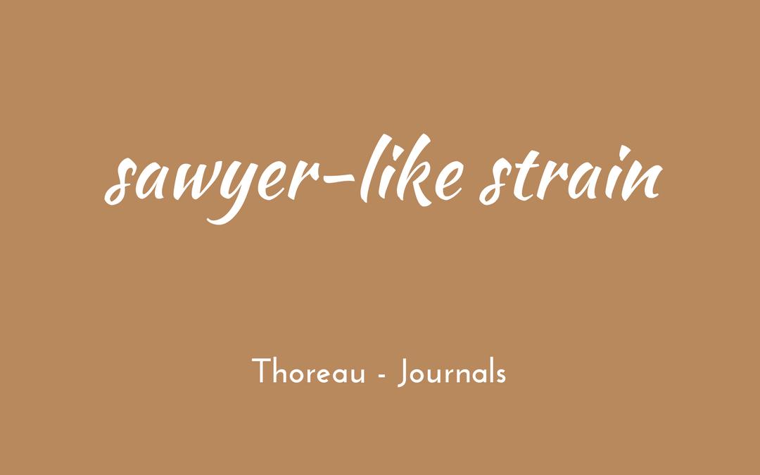 Thoreau - Journal - sawyer-like strain