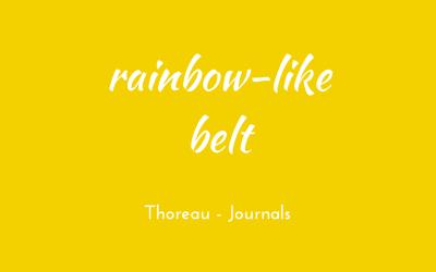 Rainbow-like belt
