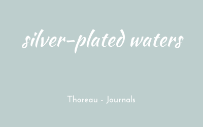Silver-plated water