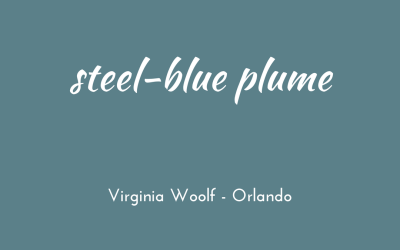 Steel-blue plumes, gleams and feathers