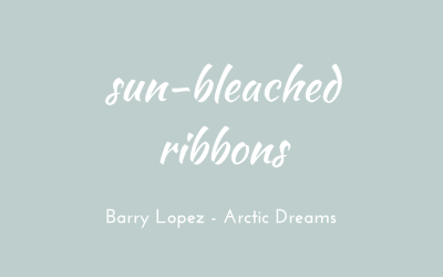 Sun-bleached ribbons