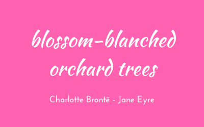 Blossom-blanched