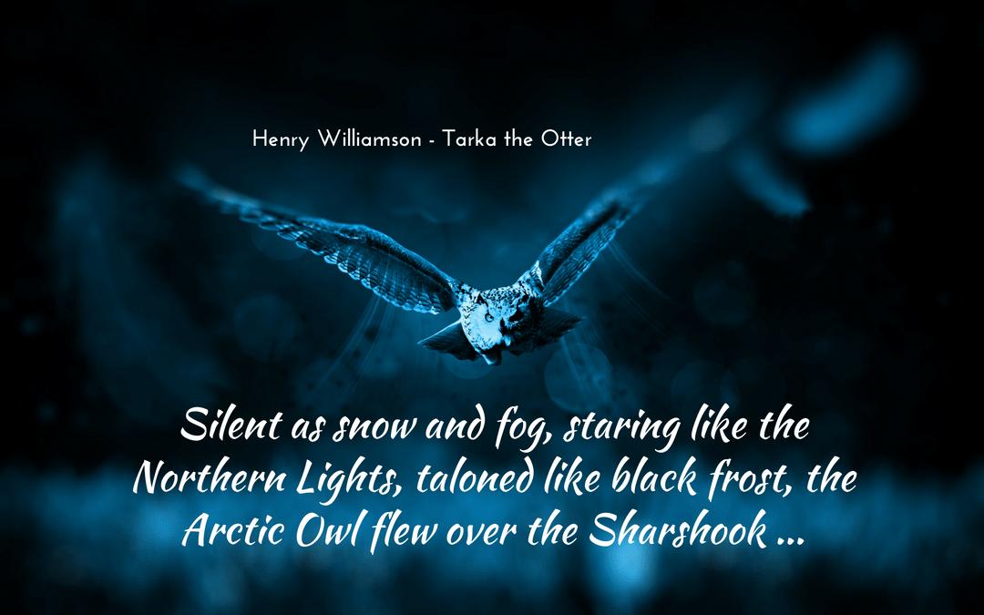 Henry Williamson - Tarka the Otter - metaphor