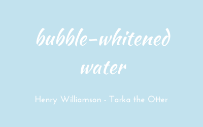 Bubble-whitened water