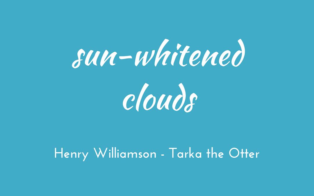 Henry Williamson - Tarka the Otter - triologism