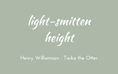 Light-smitten height