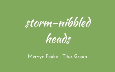 Storm-nibbled heads