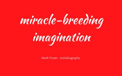 Miracle-breeding imagination