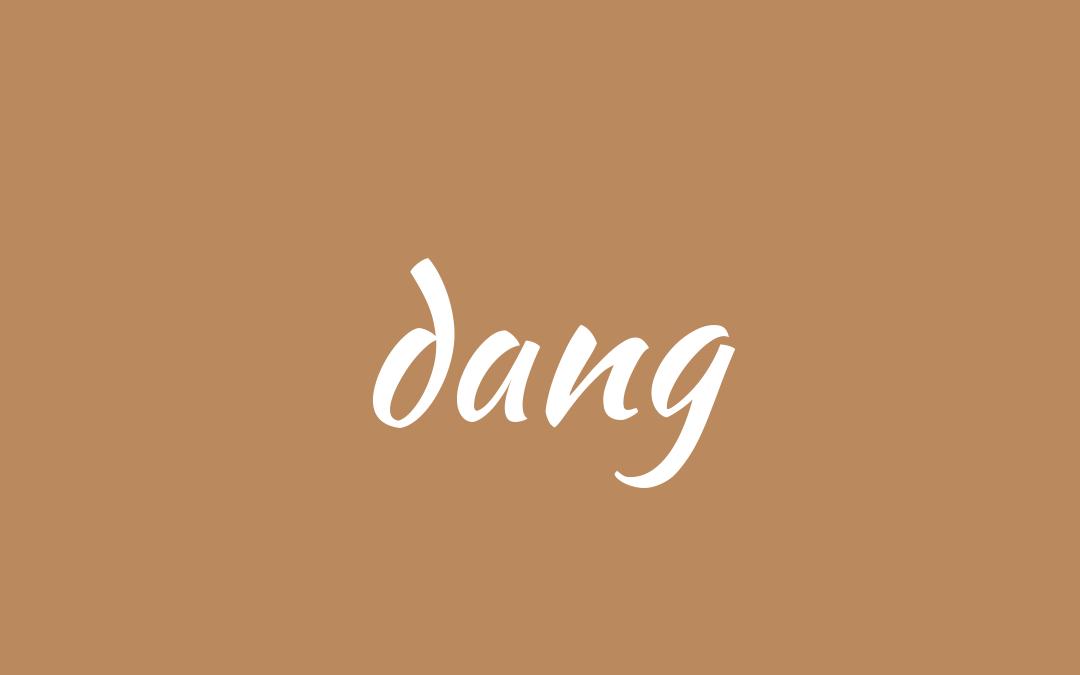 Punjabi word for a walking stick - dang