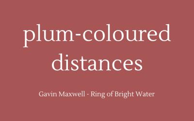 Plum-coloured distances