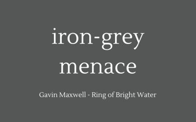 Iron-grey menace