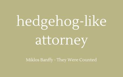 Hedgehog-like attorney