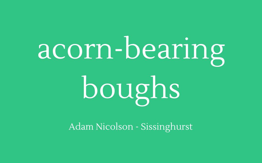 Acorn-bearing boughs