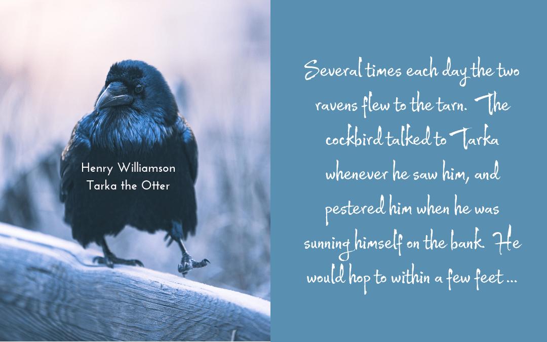 Quotation - Williamson - Tarka the Otter