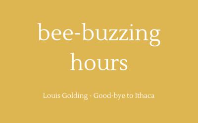 Bee-buzzing hours