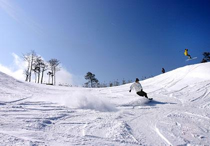 江原道大明維瓦爾第滑雪度假村一日游_韓國自由行_韓國旅游攻略_韓國景點美食 - 在首爾旅游網