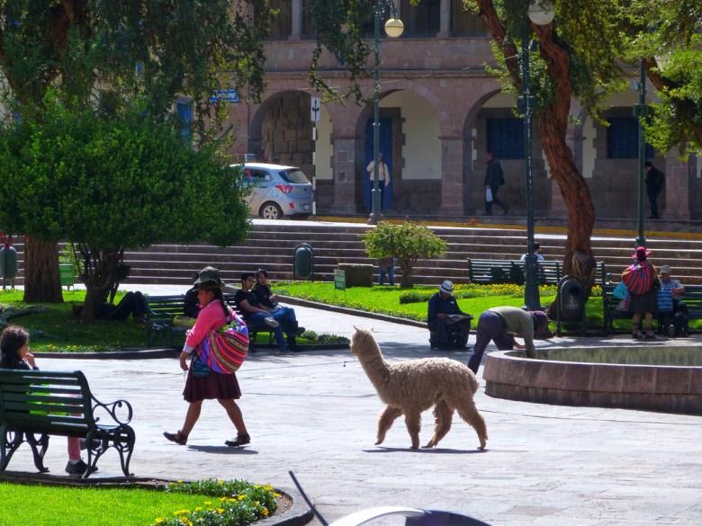 Peruvian woman Cusco Peru