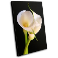 Calla Lily Flowers Floral SINGLE CANVAS WALL ART Picture