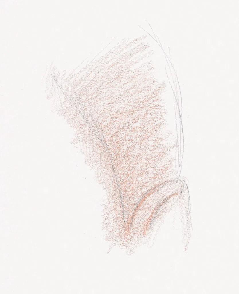 Demonstração do cabelo curto e encaracolado, etapa 1 | Lee Hammond | Desenho de cabelo para iniciantes em grafite e lápis de cor | Rede de Artistas