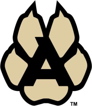 Image result for arizona coyotes kachina logo