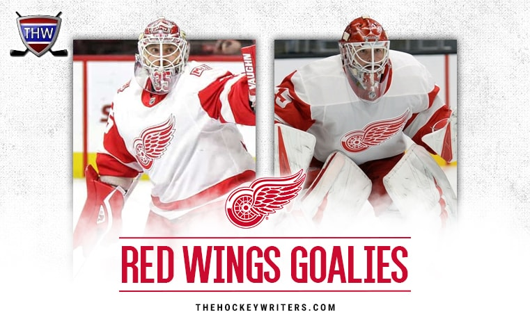 Detroit Red Wings Goalies A Deep Dive Into Their Goals